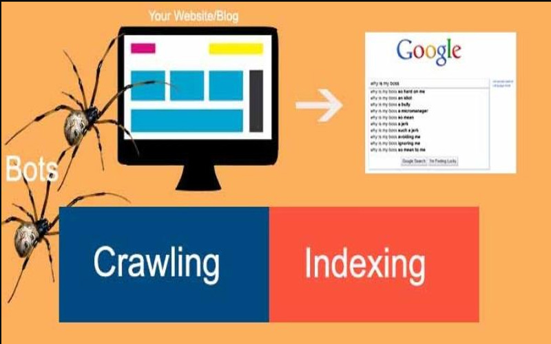 Kenapa Website Tidak Terindex Di Google